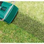 1016001419_52_150x150 Warum sollte man den Rasen vertikutieren?