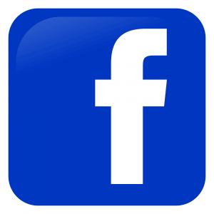 Facebook_icon-300x300 Produkttest: Einhell Akku Heckenschere ARCURRA