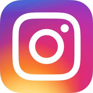 Instagram_icon-300x300 Produkttest: Einhell Akku Heckenschere ARCURRA